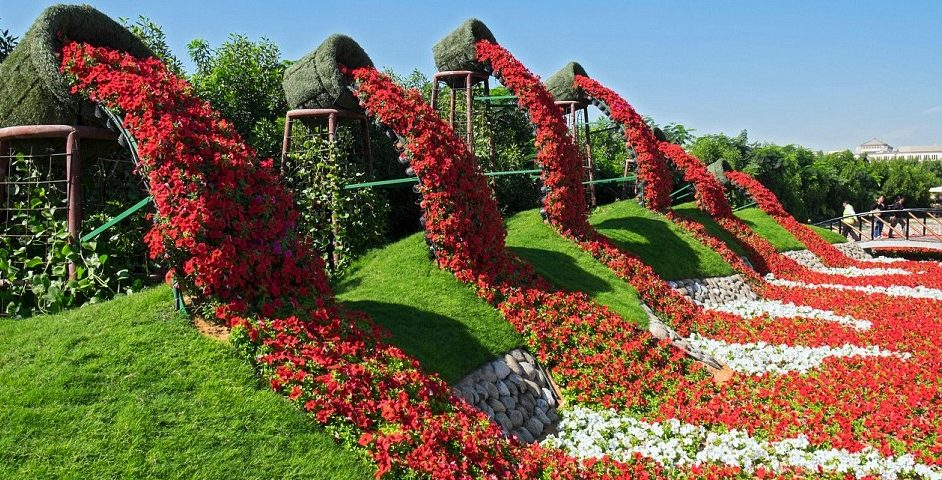 jardin-0